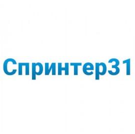 ИБП Импульс Спринтер 31